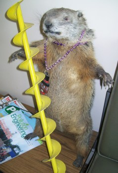 Groundhog Auger
