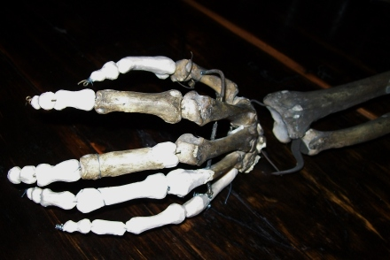 Oh look! Hand-carved replacement bones.
