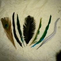 One of each of the feather types which will make up the tree. Yes, I'm having a ridiculous amount of fun with this project.