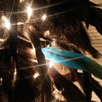 I ~had~ to place 1 teal feather before retiring for the night. As a test.